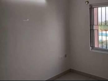 1230 sqft, 2 bhk Apartment in Builder Brigade Northridge Kogilu, Bangalore at Rs. 24000