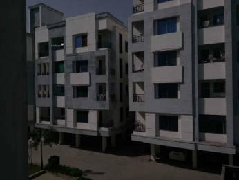 1550 sqft, 3 bhk Apartment in Builder Project Gotri, Vadodara at Rs. 40.0000 Lacs