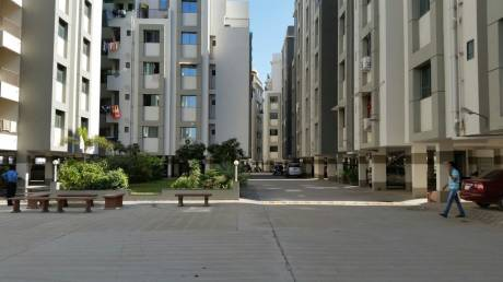 1600 sqft, 3 bhk Apartment in Builder Project Vasana Bhayli Road, Vadodara at Rs. 28.0000 Lacs