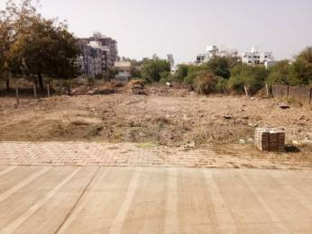 3900 sqft, Plot in Builder Project Gotri, Vadodara at Rs. 1.5600 Cr
