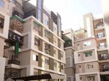 1000 sqft, 2 bhk Apartment in Builder Project Gotri, Vadodara at Rs. 22.0000 Lacs