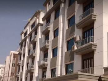 3200 sqft, 4 bhk Apartment in Builder Project Vasana Bhayli Road, Vadodara at Rs. 80.0000 Lacs