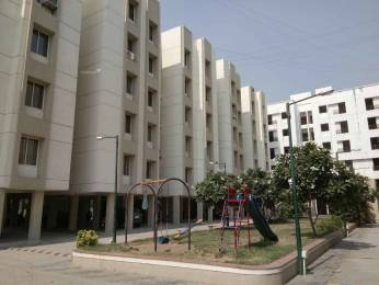 651 sqft, 1 bhk Apartment in Builder Project Gotri Road, Vadodara at Rs. 18.0000 Lacs
