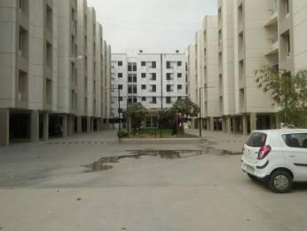 1050 sqft, 2 bhk Apartment in Builder Project Gotri Road, Vadodara at Rs. 25.0000 Lacs