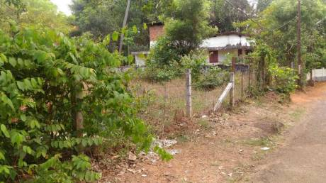 4350 sqft, Plot in Builder Project Aranattukara, Thrissur at Rs. 90.0000 Lacs