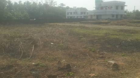 3484 sqft, Plot in Builder Project Chembukkav, Thrissur at Rs. 92.0000 Lacs