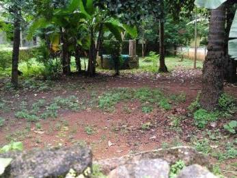 3484 sqft, Plot in Builder Project Kolazhy, Thrissur at Rs. 14.4000 Lacs