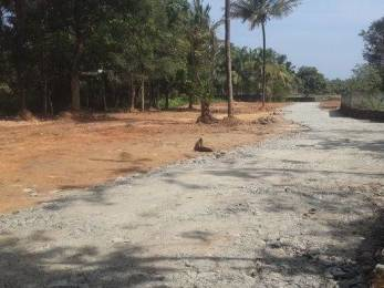 5445 sqft, Plot in Builder Project Kolazhy, Thrissur at Rs. 34.3750 Lacs