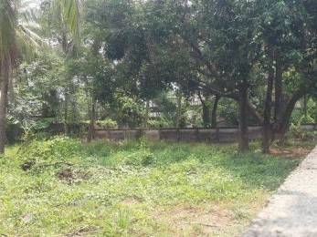 3484 sqft, Plot in Builder Project Kolazhy, Thrissur at Rs. 44.0000 Lacs