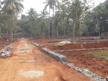 2178 sqft, Plot in Builder Project Kodakara, Thrissur at Rs. 11.2500 Lacs