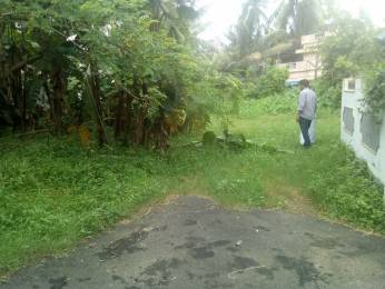 4574 sqft, Plot in Builder Project Kalathode, Thrissur at Rs. 81.3750 Lacs
