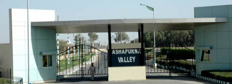 1242 sqft, Plot in Builder Ashapurna Valley Extension Pali Road, Jodhpur at Rs. 27.0000 Lacs