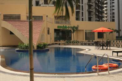 1464 sqft, 3 bhk Apartment in Supertech Eco Village 2 Sector 16B Noida Extension, Greater Noida at Rs. 43.5000 Lacs