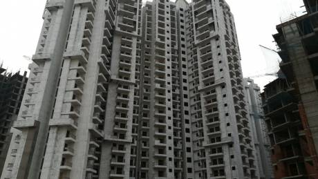 1350 sqft, 3 bhk Apartment in JM Flora Sector 1 Noida Extension, Greater Noida at Rs. 41.3000 Lacs