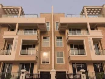 2259 sqft, 3 bhk BuilderFloor in Ansal Esencia Sector 67, Gurgaon at Rs. 23000