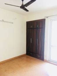 850 sqft, 2 bhk Apartment in Jaypee Kosmos Sector 134, Noida at Rs. 10000