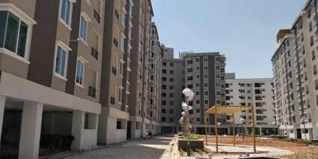 1080 sqft, 2 bhk Apartment in Brigade Cedar Devanahalli, Bangalore at Rs. 54.0000 Lacs