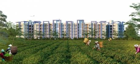 765 sqft, 2 bhk Apartment in Builder Manakamna24 Devidanga, Siliguri at Rs. 17.5000 Lacs