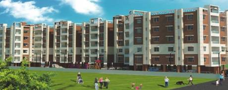 976 sqft, 2 bhk Apartment in Asian Indigo Residency Chayan Para, Siliguri at Rs. 21.4720 Lacs