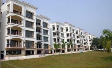 2260 sqft, 3 bhk Apartment in Builder Barsana Garden Apartment Matigara, Siliguri at Rs. 67.0000 Lacs