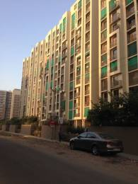 1250 sqft, 2 bhk Apartment in Safal Orchid Elegance Bopal, Ahmedabad at Rs. 53.0000 Lacs
