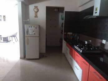 1876 sqft, 3 bhk Apartment in Goyal Orchid Harmony Shela, Ahmedabad at Rs. 20000