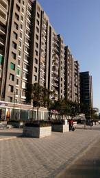 1210 sqft, 2 bhk Apartment in Savvy Swaraaj Sports Living Gota, Ahmedabad at Rs. 38.0000 Lacs