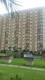 650 sqft, 1 bhk Apartment in Trehan Royal Court Shahjahanpur, Neemrana at Rs. 24.4000 Lacs