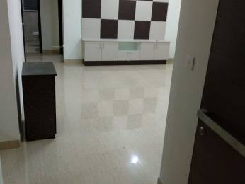 1100 sqft, 2 bhk Apartment in Trend Rythme Hitech City, Hyderabad at Rs. 30000