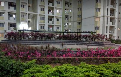 980 sqft, 2 bhk Apartment in Mantri Celestia Nanakramguda, Hyderabad at Rs. 35000