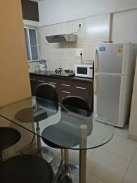 1600 sqft, 3 bhk Apartment in Iris Iris Society Baner, Pune at Rs. 35000