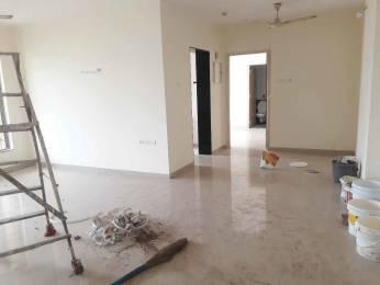 1603 sqft, 3 bhk Apartment in Kalpataru Harmony Wakad, Pune at Rs. 25000