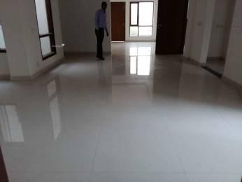 2691 sqft, 6 bhk Villa in Builder RWA SECTOR 50 NOIDA Sector50 Noida, Noida at Rs. 3.0000 Cr