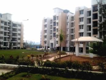 779 sqft, 1 bhk Apartment in Builder omaxe parkwood Sai Road, Baddi at Rs. 15.0000 Lacs