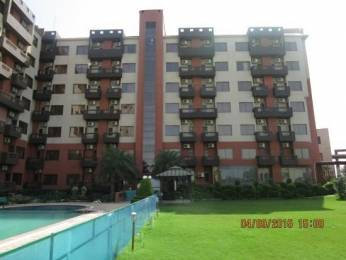 520 sqft, 1 bhk Apartment in Express Hare Krishna Orchid Vrindavan, Mathura at Rs. 12000