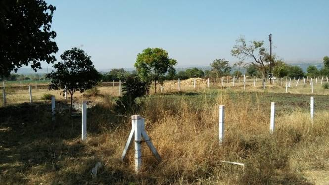 4500 sqft, Plot in Builder Green Acres Gangapur, Nashik at Rs. 26.0000 Lacs