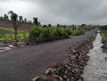 14000 sqft, Plot in Builder BRAMHA GREENS Trimbak, Nashik at Rs. 35.0008 Lacs