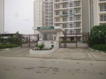 1170 sqft, 2 bhk Apartment in Jaypee The Pavilion Court Sector 128, Noida at Rs. 62.0000 Lacs