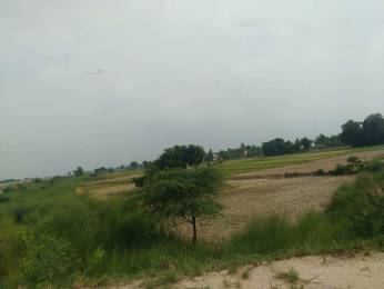 1000 sqft, Plot in Builder River Dale Sahjanwa Road, Gorakhpur at Rs. 3.5100 Lacs