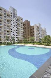 1157 sqft, 2 bhk Apartment in Sheth Beverly Hills Hinjewadi, Pune at Rs. 72.0000 Lacs