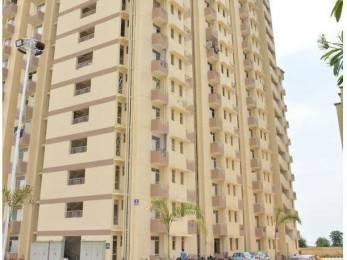 254 sqft, 1 bhk Apartment in Builder Project Alwar Bhiwadi Road, Alwar at Rs. 85.0000 Lacs