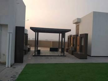 1231 sqft, 2 bhk Apartment in Kotecha Royal Tatvam Mansarovar Extension, Jaipur at Rs. 38.1610 Lacs