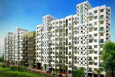 1715 sqft, 3 bhk Apartment in Sheth Beverly Hills Hinjewadi, Pune at Rs. 96.0000 Lacs