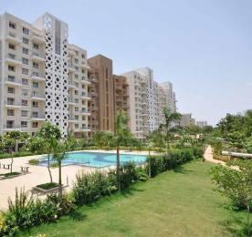 705 sqft, 1 bhk Apartment in Sheth Beverly Hills Hinjewadi, Pune at Rs. 15000