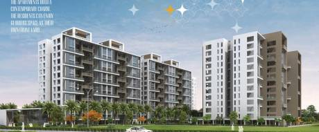 1065 sqft, 2 bhk Apartment in 5 Star Royal Entrada Wakad, Pune at Rs. 20000
