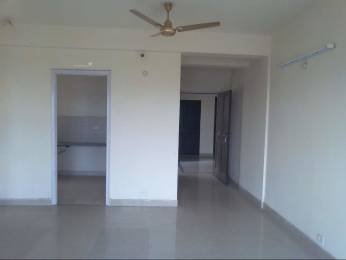 1305 sqft, 2 bhk Apartment in BPTP Princess Park Sector 86, Faridabad at Rs. 11000