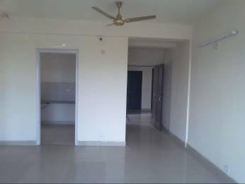 1305 sqft, 2 bhk Apartment in BPTP Princess Park Sector 86, Faridabad at Rs. 11000