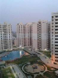 1025 sqft, 2 bhk Apartment in SRS Royal Hills Sector 87, Faridabad at Rs. 10000