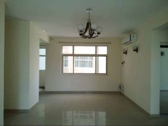 1900 sqft, 3 bhk Apartment in Omaxe Spa Village Sector 78, Faridabad at Rs. 16000