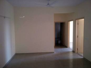 1350 sqft, 3 bhk Apartment in Omaxe New Heights Sector 78, Faridabad at Rs. 12500